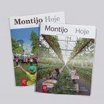 Jornal Montijo